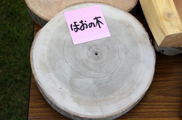 ホオノキの画像 p1_33